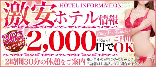 ホテル情報